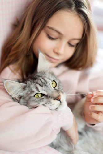 MYSTICROSE Creative & Co. supports Abbey Cat Adoptions